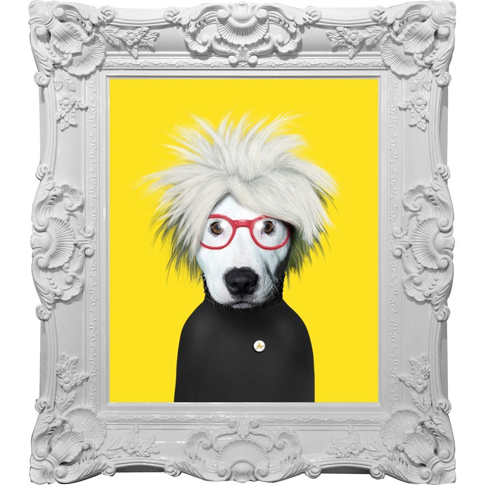 Empire Art - Pets Rock \'Soup\' Canvas Giclee Under Glass with High ...