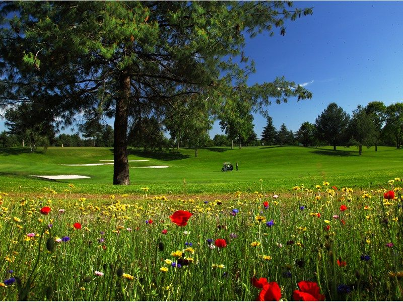 27+ Chervo golf italy viral