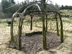Image result for willow domes