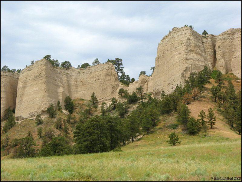 www.photomacrography.net :: View topic - Pine Ridge area ...