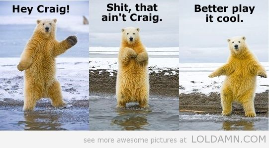 8925ff536f8474f7c32ce1624f297cfe funny pictures today! (10 pics funny, plays and bears