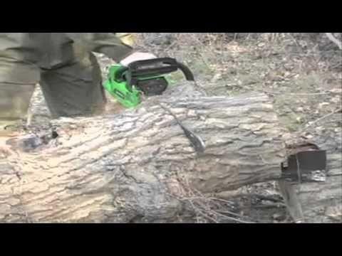 Chainsaw Dog - YouTube