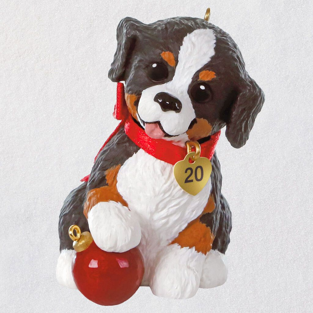 Puppy Love Australian Shepherd 2020 Ornament in 2020