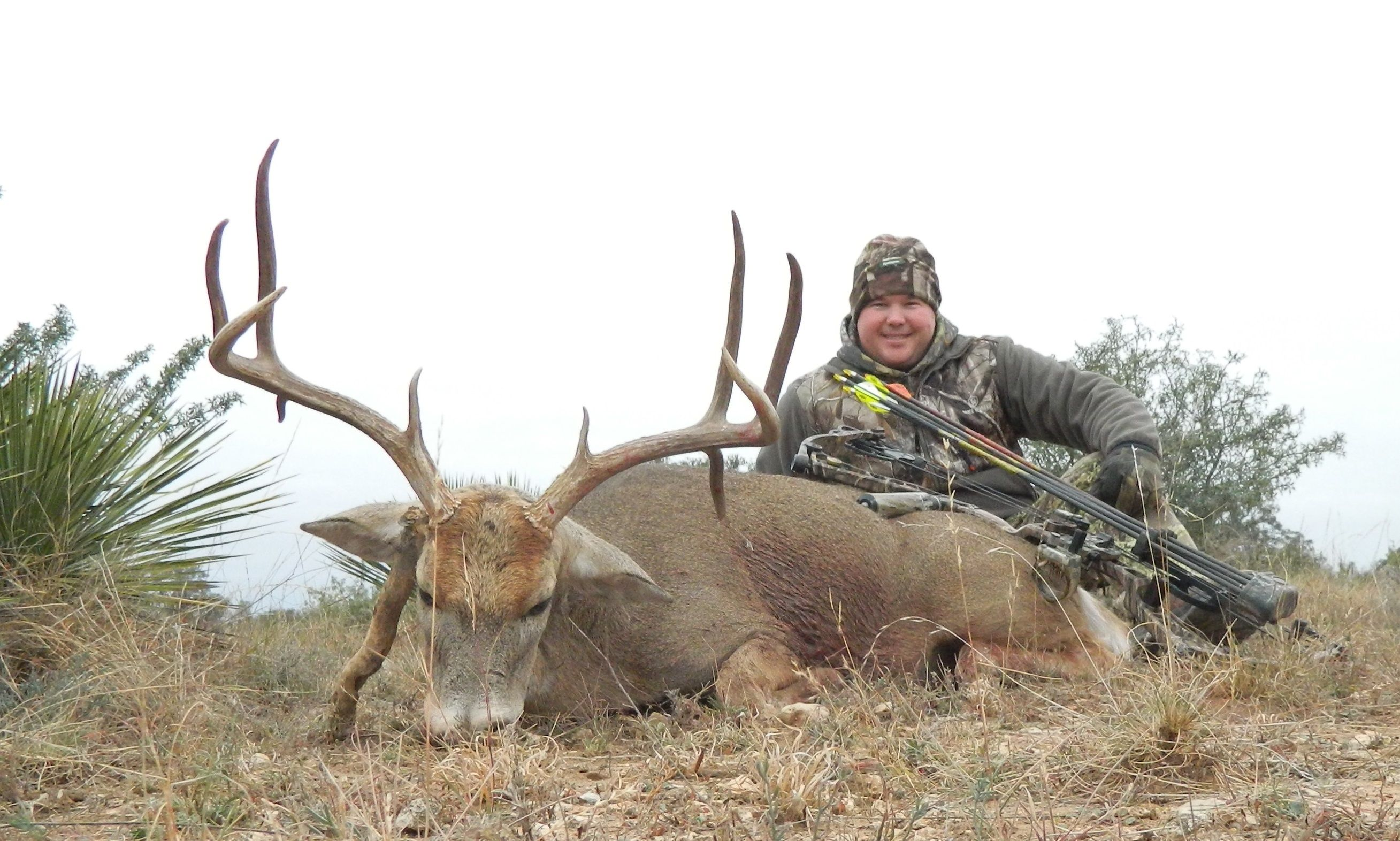 Drop Tine Bow Whitetail Buck Whitetail Hunts