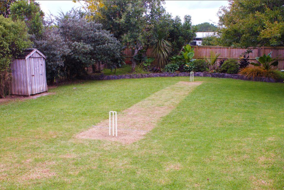 Backyard cricket anyone? | Backyard court, Backyard ...