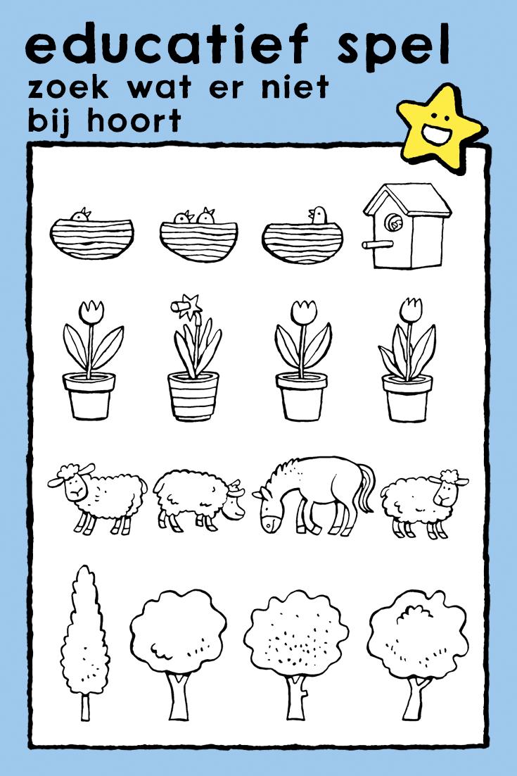 kleurplaten dieren spelletjes kleurplaat bestellen