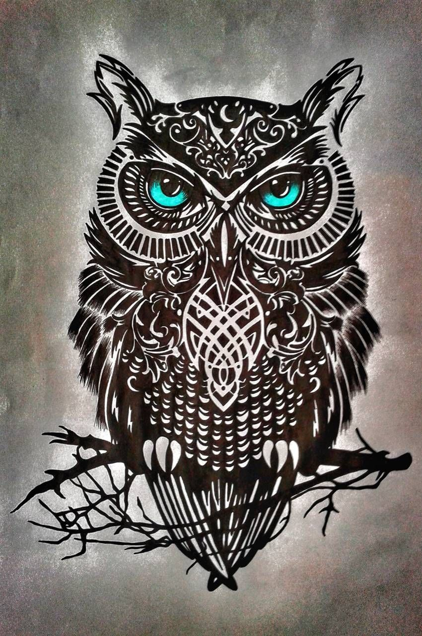 Download Baykus Wallpaper By Mskandemir43 D4 Free On Zedge Now Browse Millions Of Popular Cizim Wallpape Owl Tattoo Drawings Owl Tattoo Owl Tattoo Design Tattoo wallpaper photos download