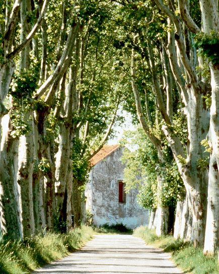 side roads of French province