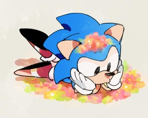 Oh My Goodness Fangirl Squeals Ahhhhhh So Cute Classic Sonic Sonic Fan Characters Sonic Art