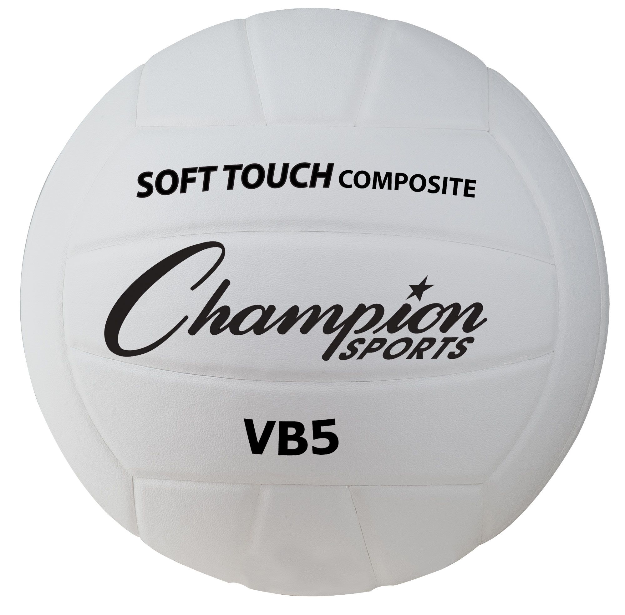 Physical Education Volleyball Volleyball Balls Deluxe Physical Education Volleyball Physics