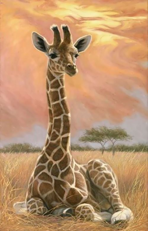 Wonderful Giraffes Wander Lord Giraffe Art Giraffe Pictures Giraffe Painting