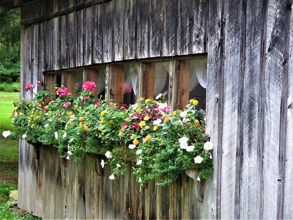 Rustic Window Box Planter Window Planter Boxes Farmhouse Shower Wood Pallet Projects