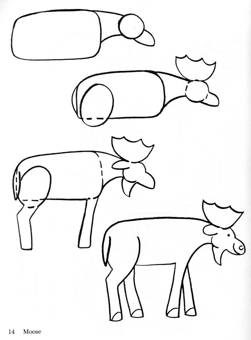 en elg draw animals pinterest how to draw to