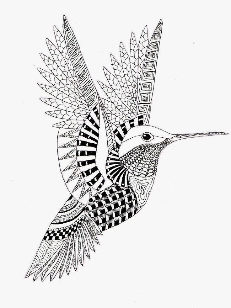 EFIE va Zentangle - Colibri Ben Kwok --par Efie - Bird and ...