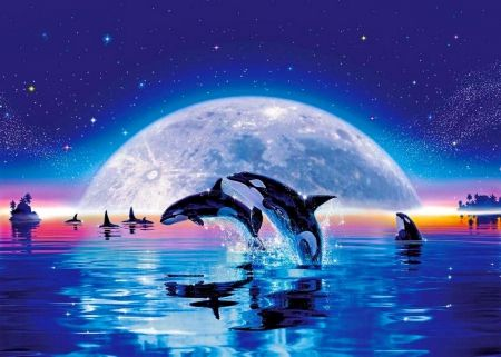 Swim+in+the+moon+-+Other+Wallpaper+ID+1493785+-+Desktop ...
