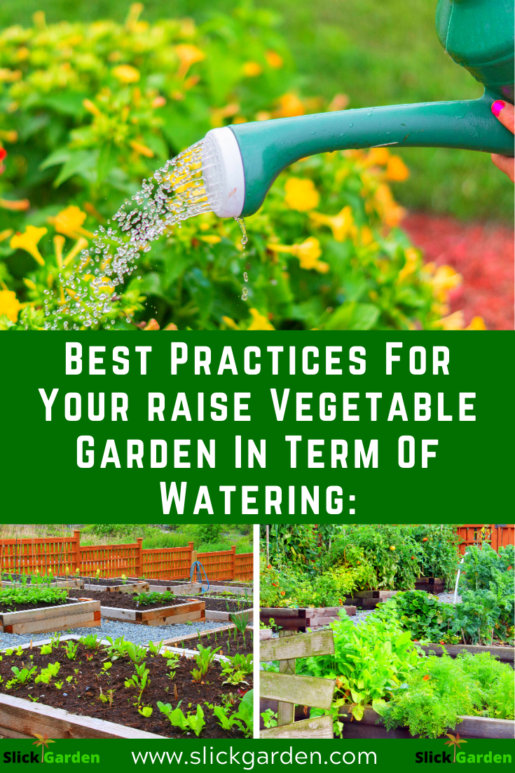 40+ When is the best time to water vegetable garden ideas