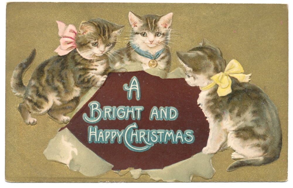Helena Maguire CATS & Break Through Christmas Greetings