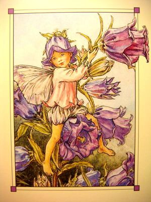 The Canterbury Bell Fairy Cicely Mary Barker Fairy Art Vintage Fairies Fairy Pictures