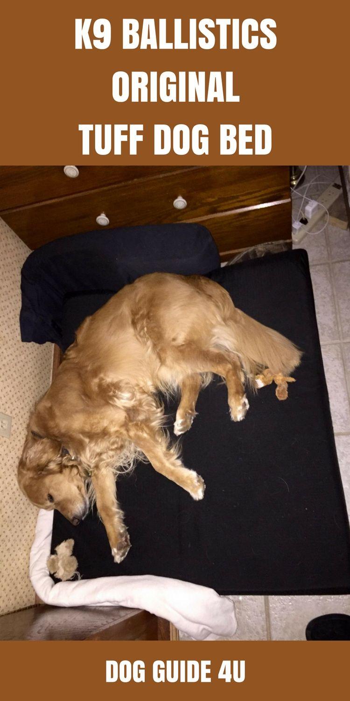 Best Dog Beds For Golden Retrievers Cool Dog Beds Dog Bed