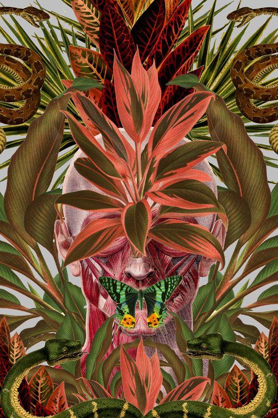 As colagens de Travis Bedel | Pinterest | Anatomía, Flor y Ilustraciones