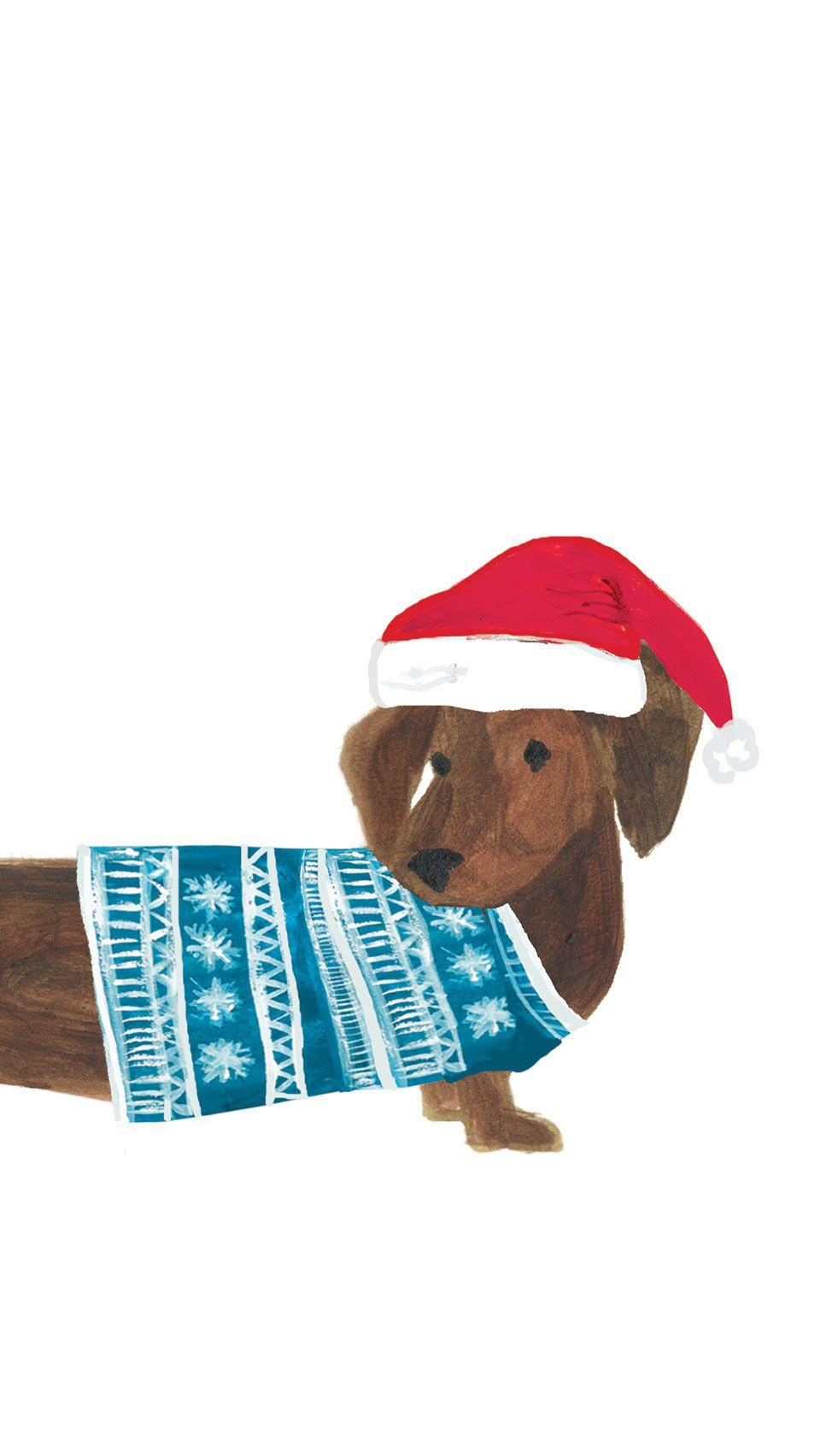 Free Festive Digital Mobile Wallpaper By Caroline Gardner A Cute Sausage Dog Illustration Wallpaper Free Download Christmas Card Illustration Mobile Wallpaper