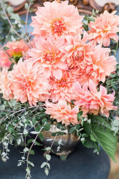 Floral Heart Inspiration | Dahlia, Pretty flowers and Peach