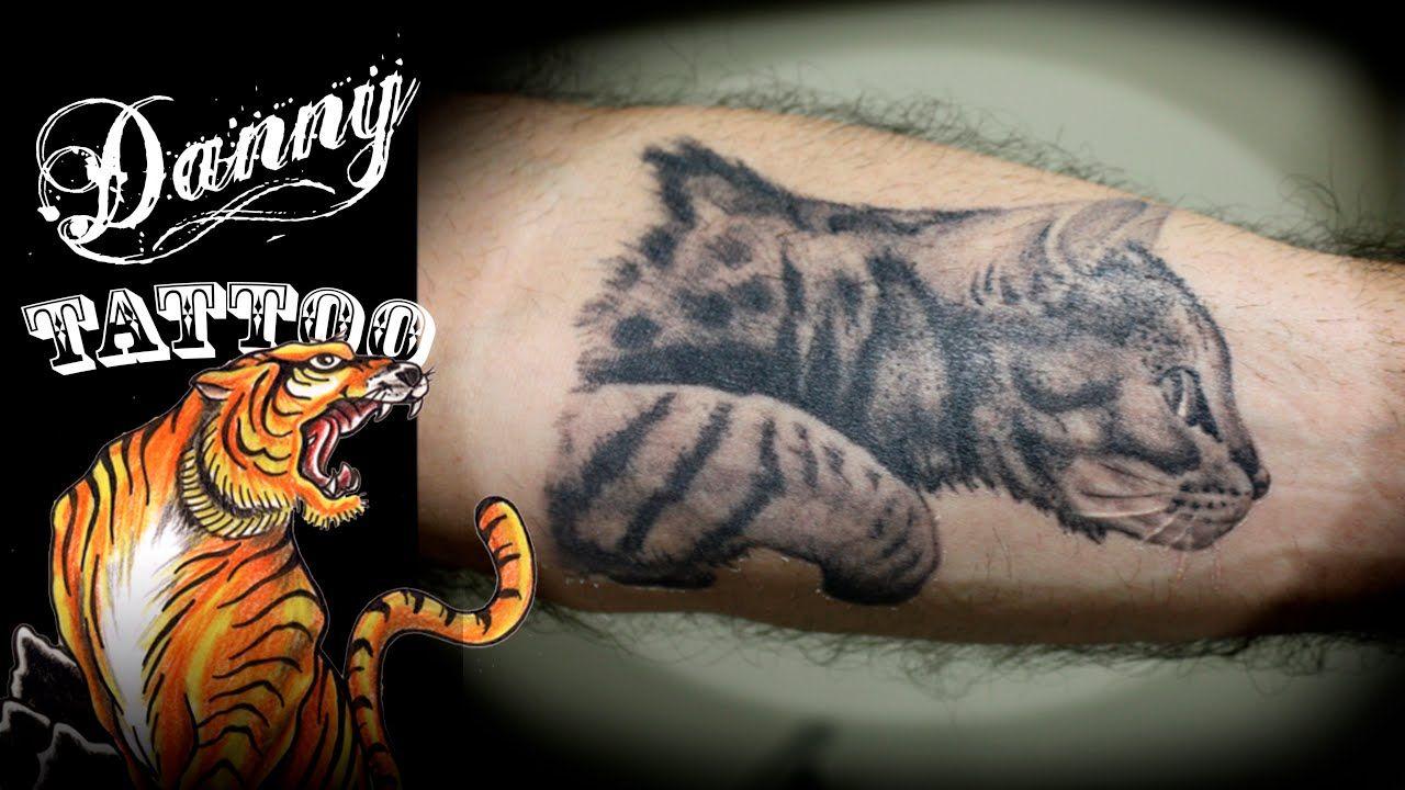aa4011743f85e Antebraço - Danny Tattoo (tattoo cat forearm) Timelapse - YouTube ...