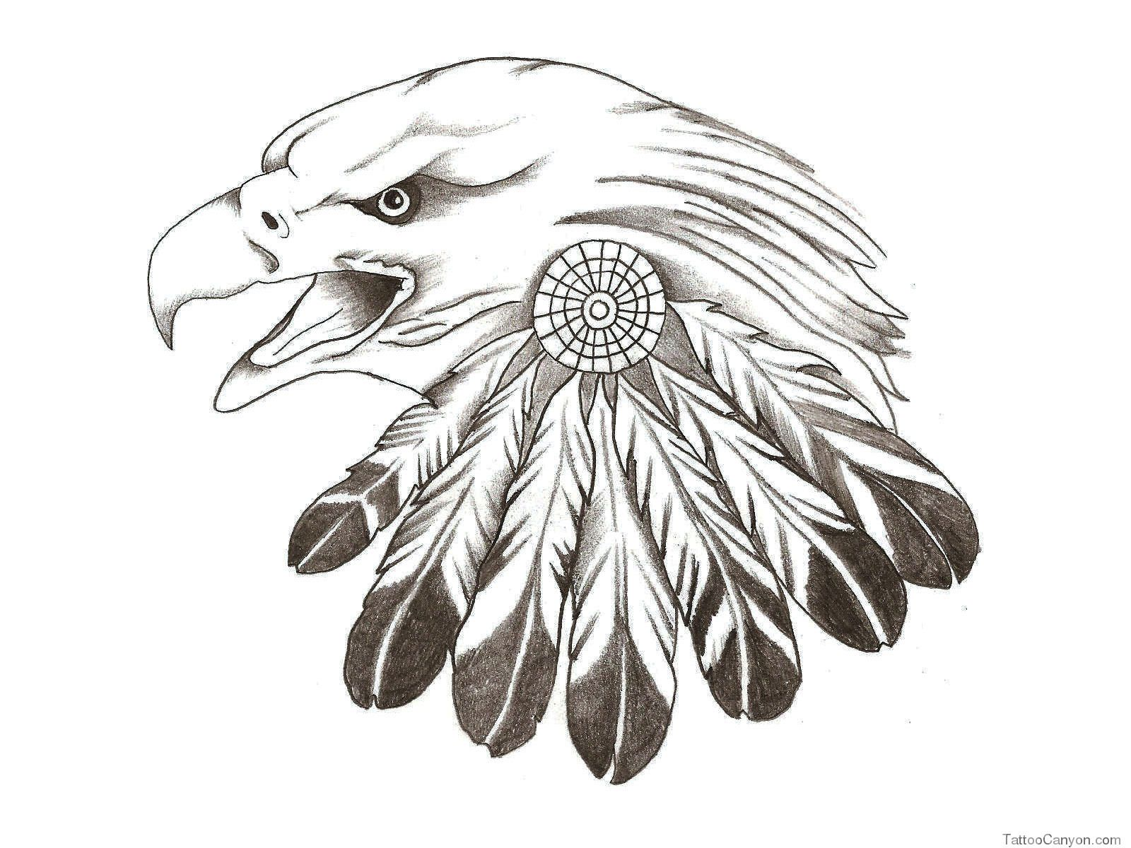 American eagle tattoos high quality photos and flash - Native American Celebrity On Native American Warrior Band And Eagle Feathers Tattoo Native American