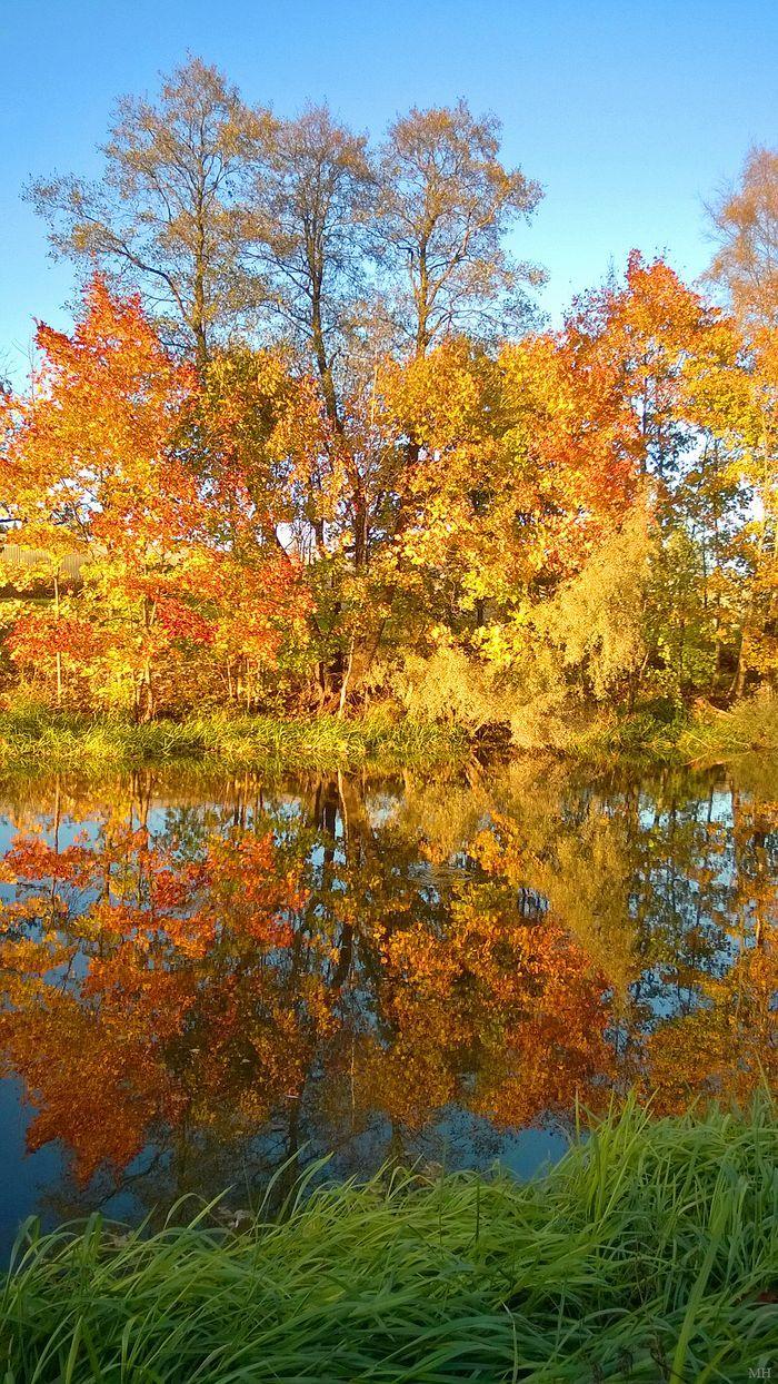 Kerava river and fall colors Markus Hirvonen