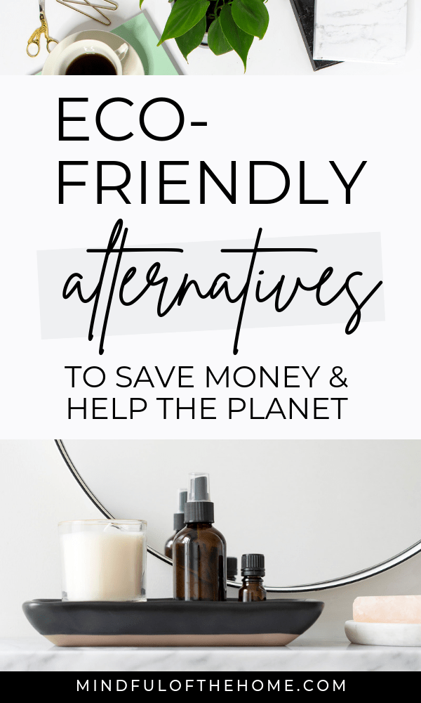 Check out these things to stop buying to save money, that will also allow you to live a more eco-friendly life. #savingmoney #moneysavingtips #howtosavemoney #ecofriendly #ecoliving #sustainability #sustainableliving #zerowaste #zerowasteliving
