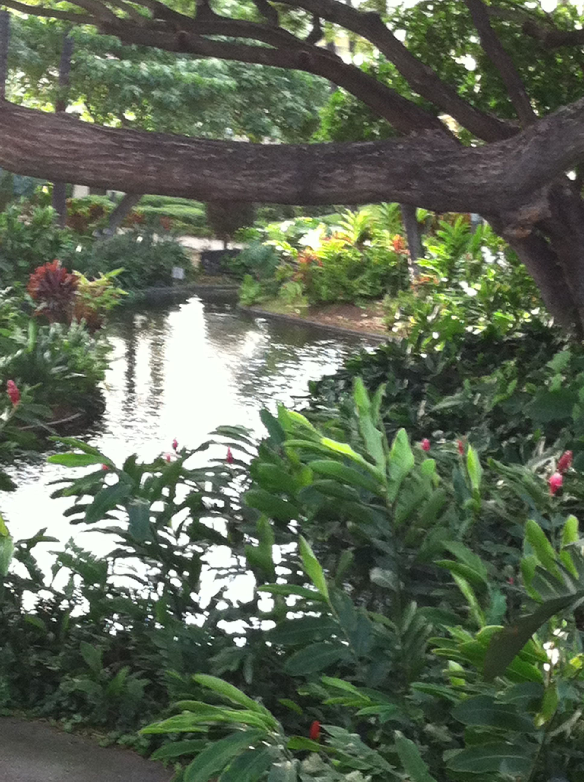 Cultural gardens inside Honolulu International airport
