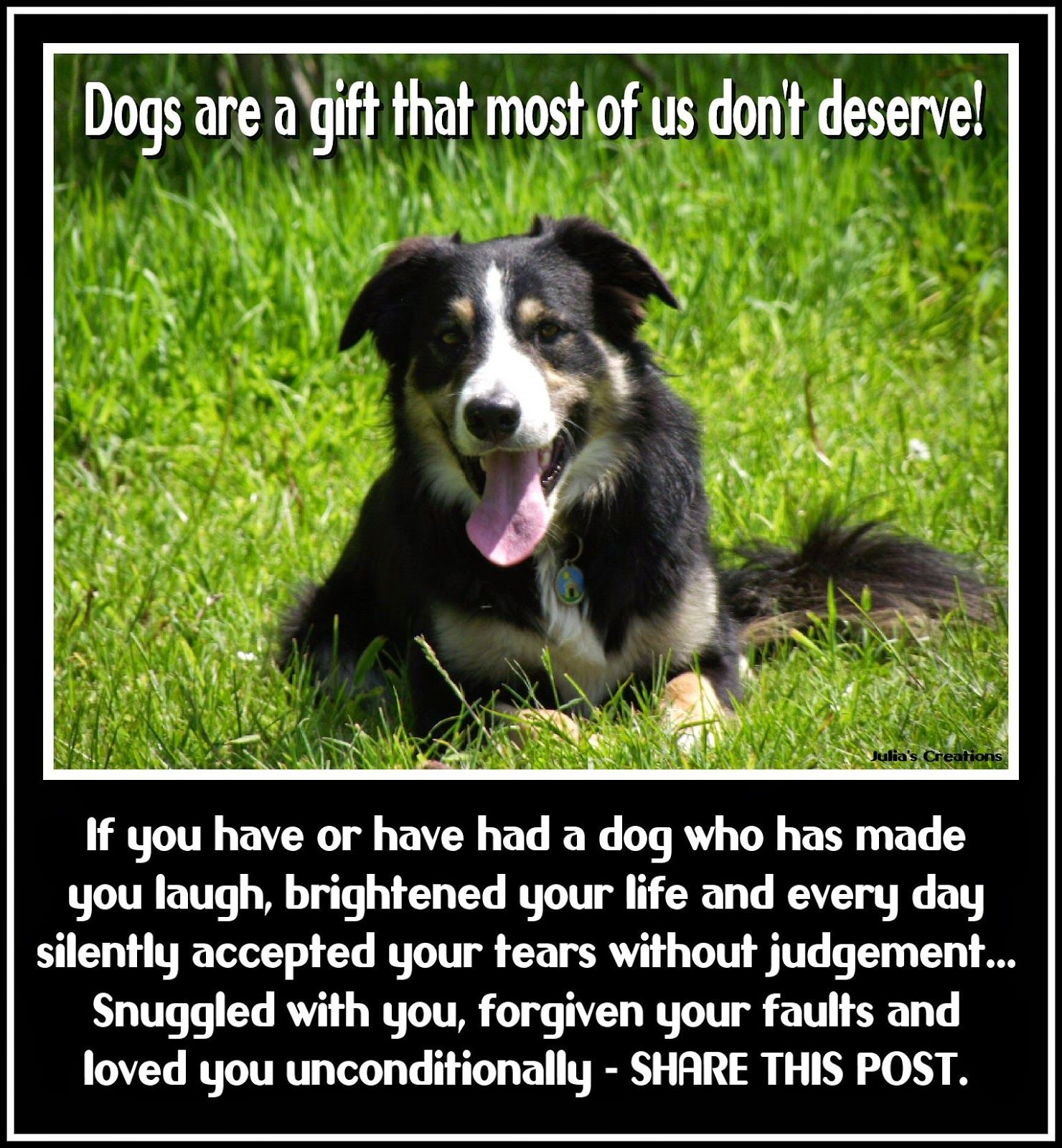 Quotes About Pets And Friendship Julia's Creations If You Have Had A Dog. Animalspets