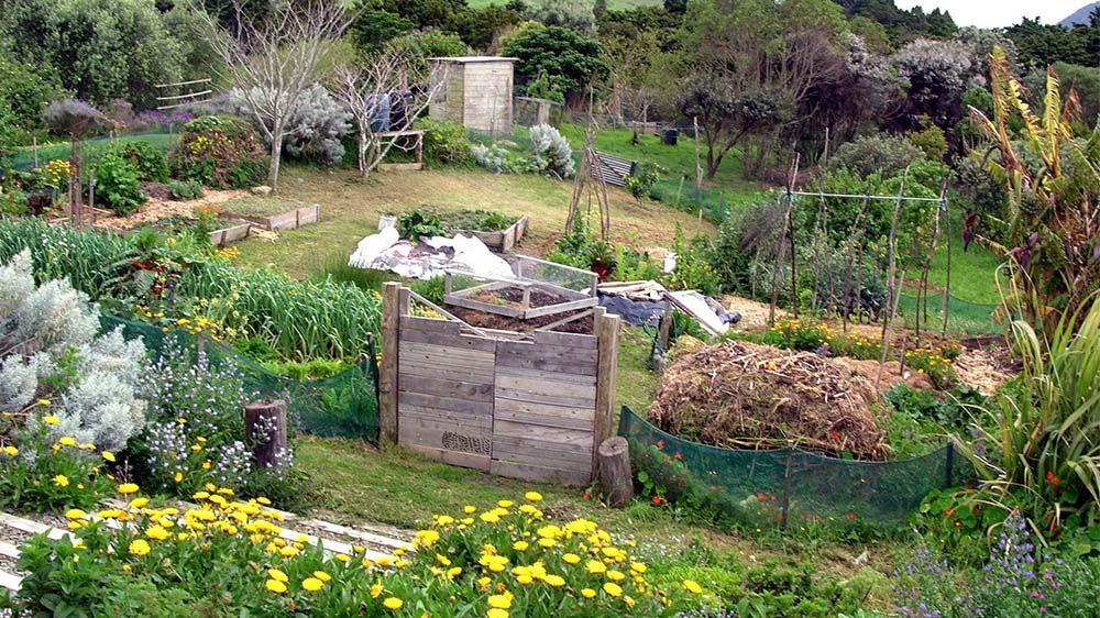 qu 39 est ce qu 39 un jardin en permaculture jardin pinterest permaculture jardinage et. Black Bedroom Furniture Sets. Home Design Ideas