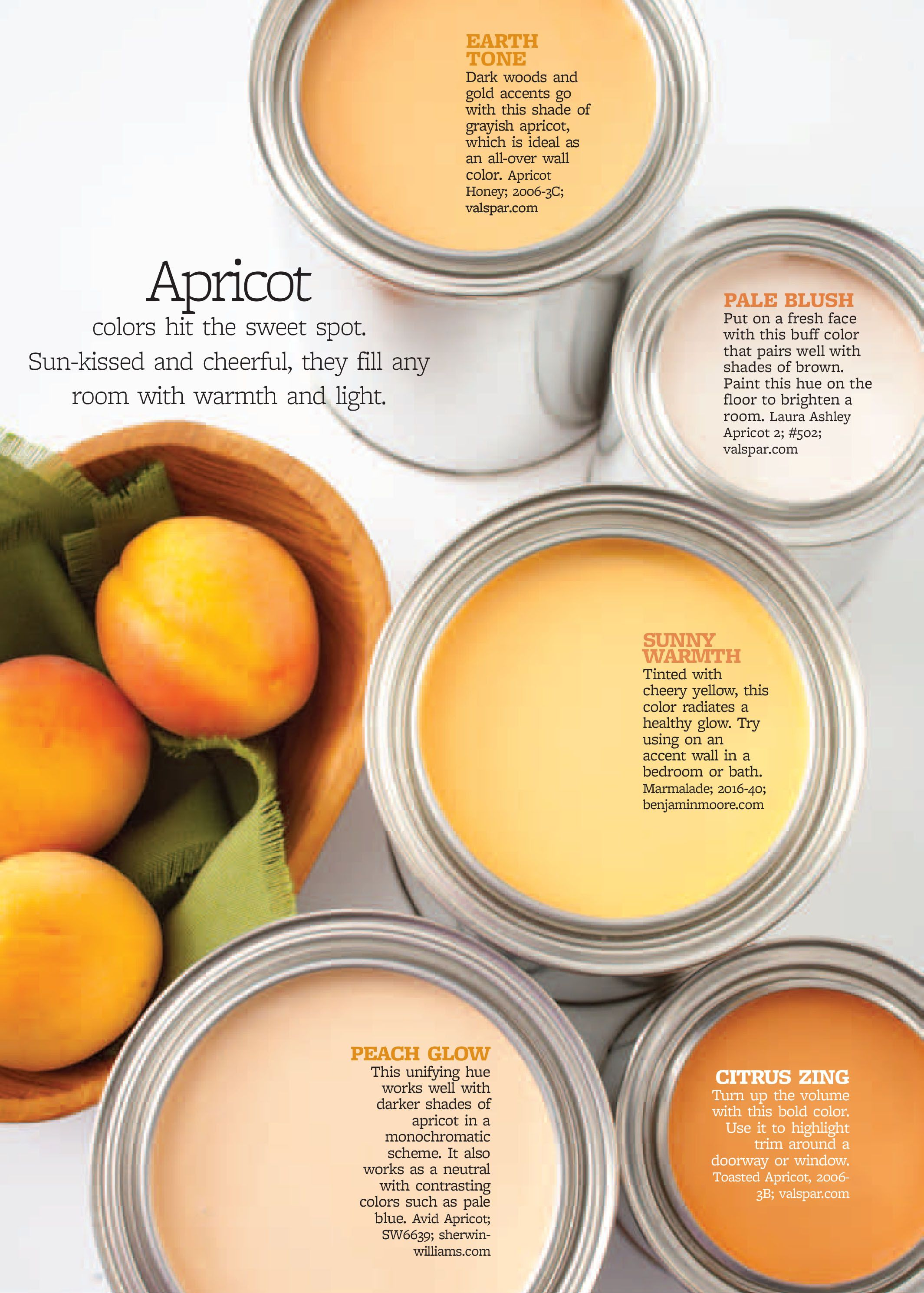 better homes and gardens apricot bhg color palettes paint color palettes paint colors for. Black Bedroom Furniture Sets. Home Design Ideas