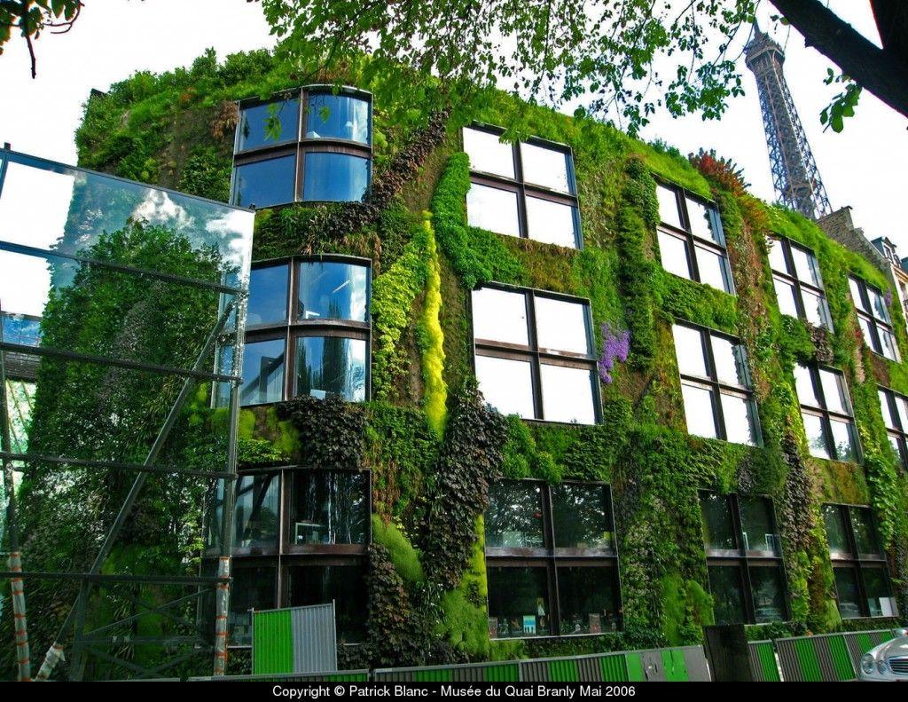 Kapitel 21 Paris   Patrick Blanc - Musée du Quai Branly Vertikale Gärten