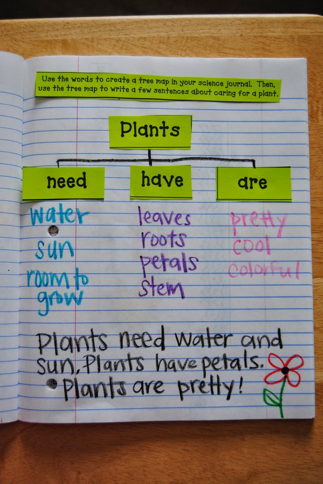 Interactive Science Journals Plants