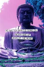 Buddha Quotes Tumblr Alluring Image Result For Buddhist Quotes Tumblr  B U D D H I S M