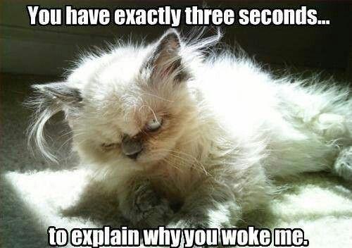 """Three Seconds"""
