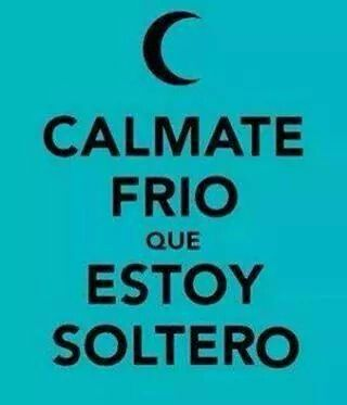 Calmate Frio Que Estoy Soltero Frases Pinterest Funny Humor Y