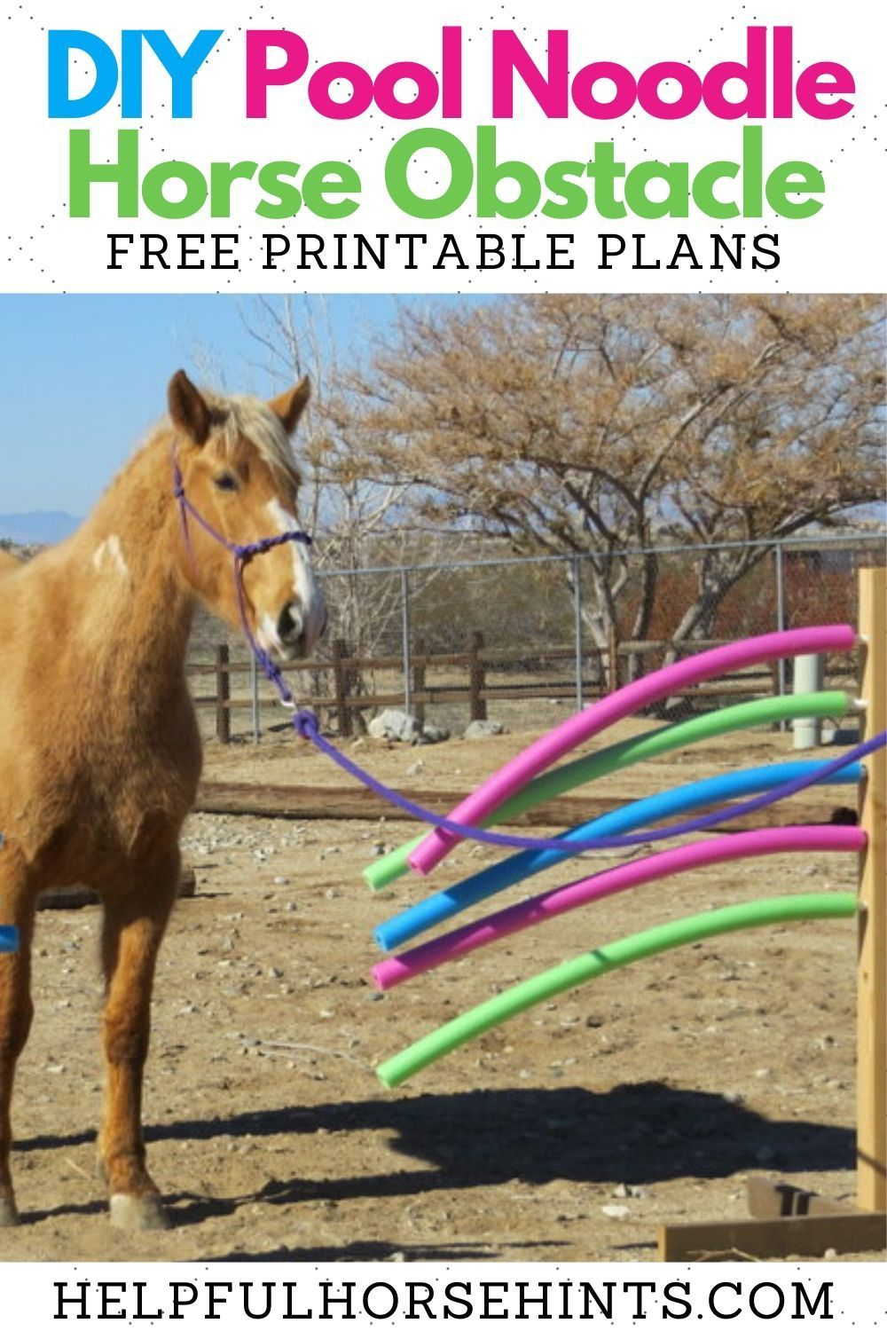 Diy pool noodle horse obstacle horses pool noodle horse