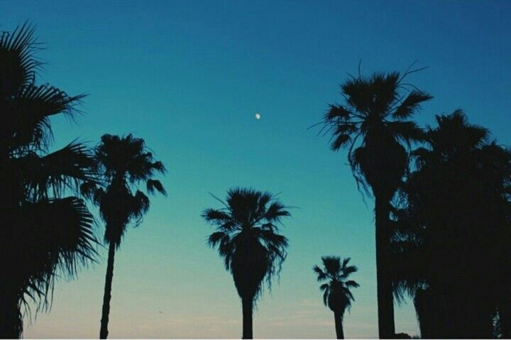 Beach when the moon came