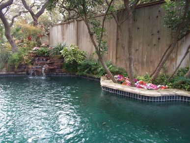 Best Landscaping Company San Antonio Cheap Affordable