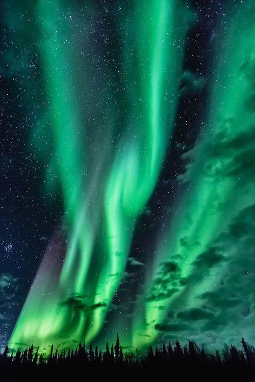 Pin By Lauren Mckenna On Unique Pictures Northern Lights Aurora Borealis Northern Lights Aurora Boreal