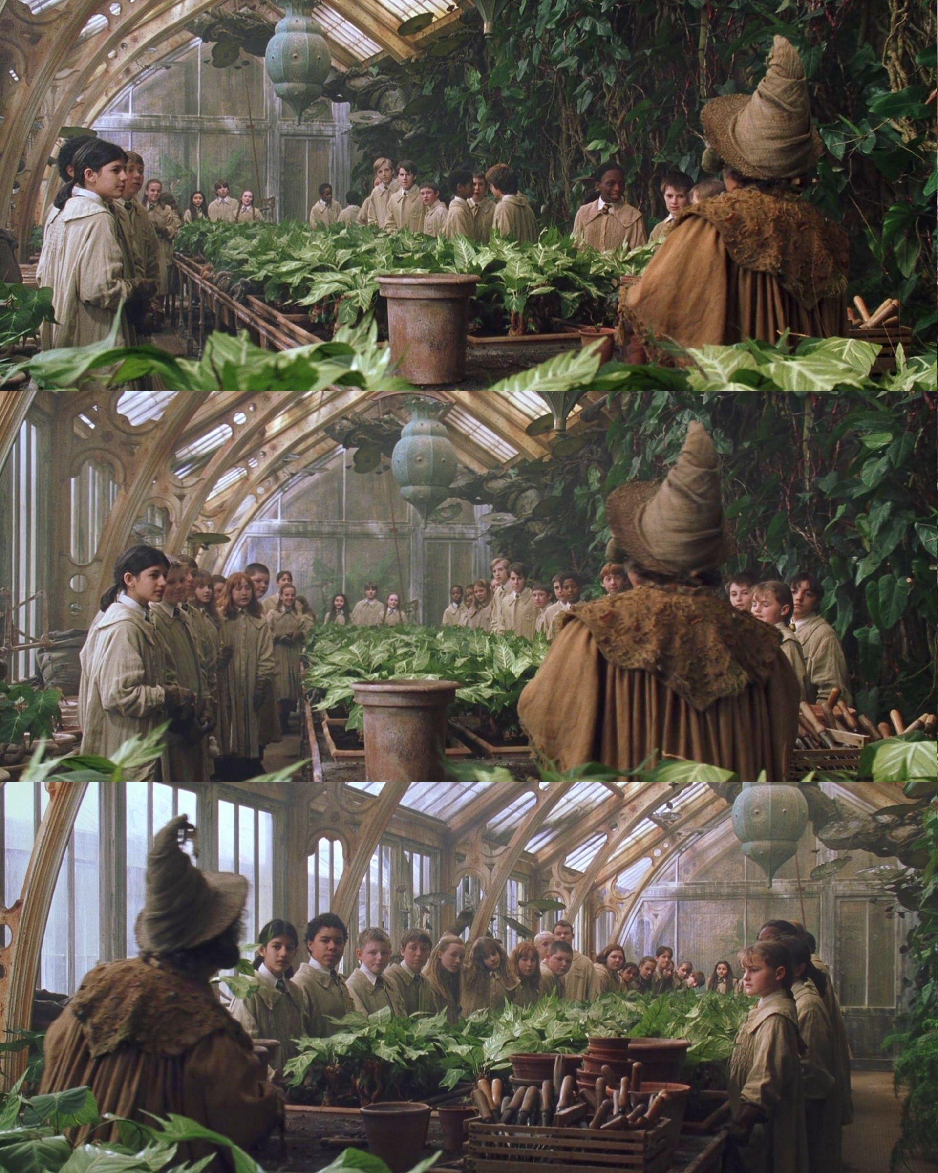 Hogwarts Herbology Greenhous