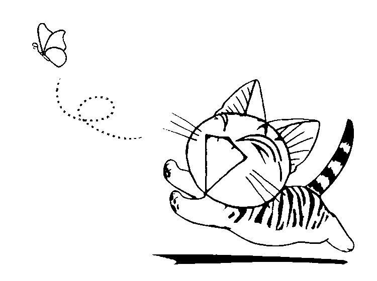 La chasse aux papillons | Pictures | Pinterest | Papillons, Bullet ...
