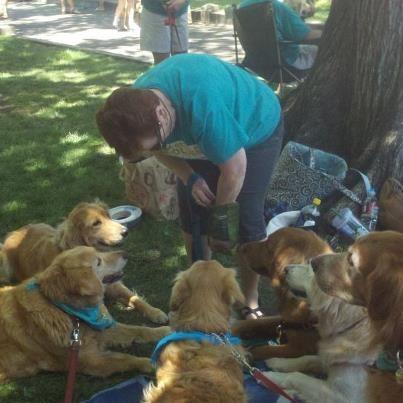 Rescue A Golden Of Arizona Woof Down Lunch In Prescott My Love