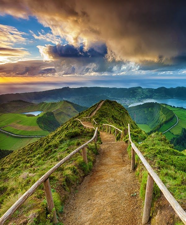 Path on The Forest Reserve of Pinhal da Paz, São Miguel Island, Azores Portugal