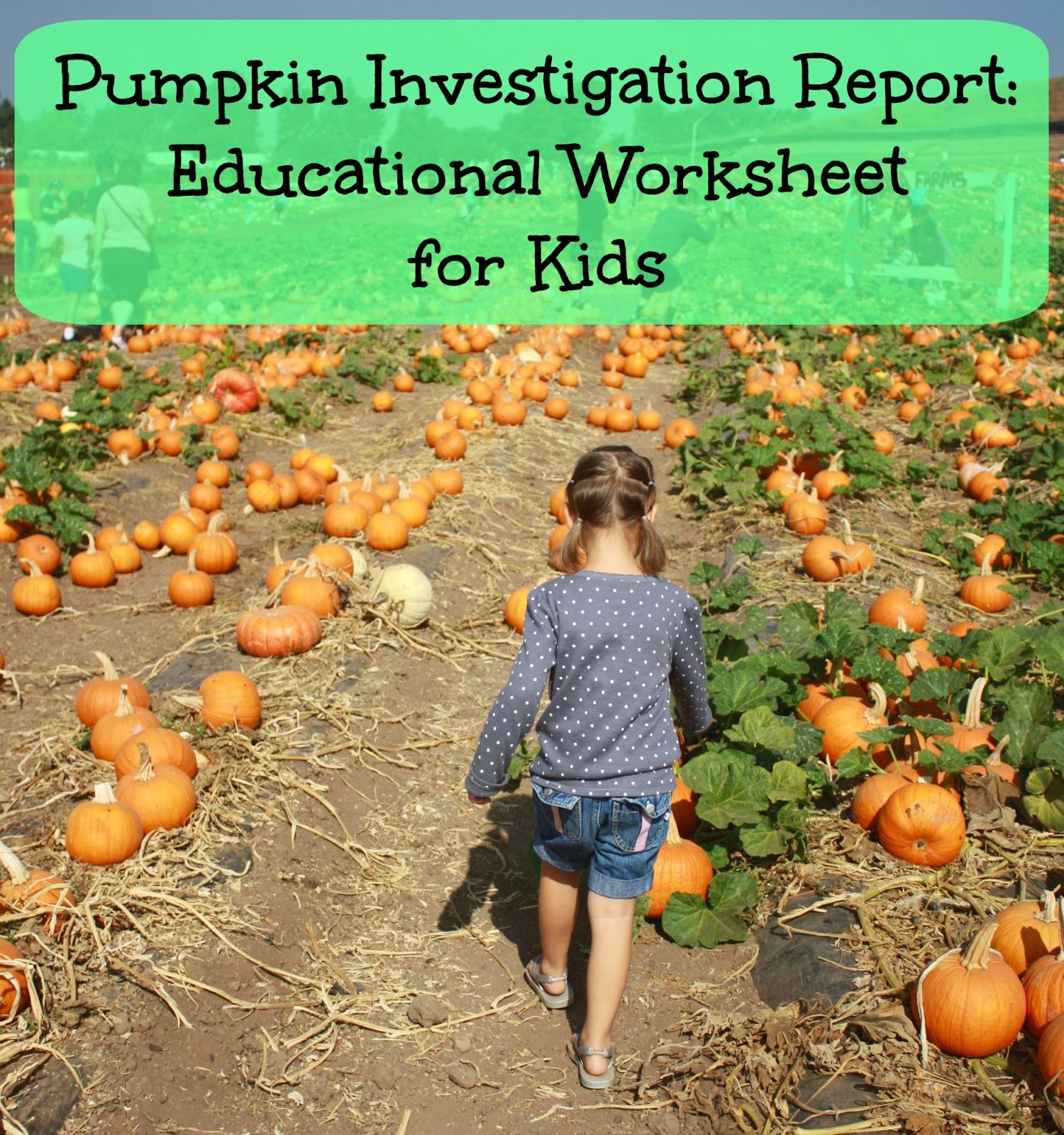 Pumpkin Patch Field Trip Includes Free Educational