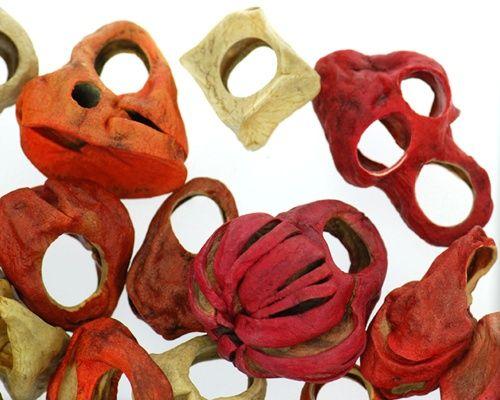 Julie Usel (CH) patates séchées et teintées