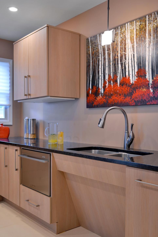 Ada Compliant Kitchen With Sleek Light Cabinets In 2020 Kitchen Sink Interior Kitchen Design Small Space Kitchen Inspiration Design